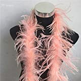 Maslin 2 Meter/Lot 2 Layer Natural Light Blue Fluffy Ostrich Feathers Boa Costumes/Trim for Party/Costume/Shawl/Ostrich Plume - (Color: Coral)