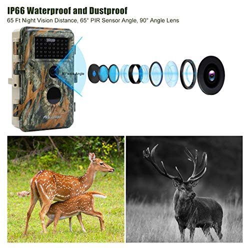 [2021 Upgrade] 2-Pack Night Vision Game Deer Trail Cameras 20MP 1080P HD MP4 H.264 Video for Hunting Wildlife & Home Security Motion Activated Waterproof No Glow Farm & Yard Camera Photo & Video Model