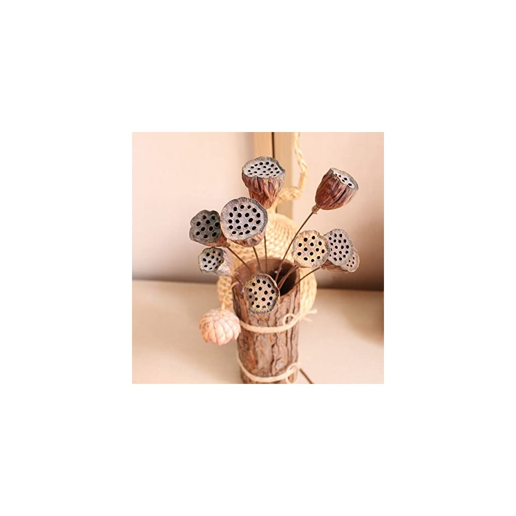 Xiaolanwelc 10PCS New Small Natural Dried Flower Original Ecological Natural Plants Dried Flowers Hay Dried Fruit Mini Lotus Temperament (60CM Long)