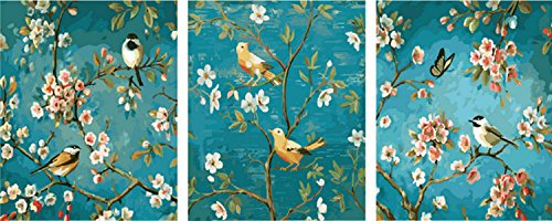 Pack of 3[Wooden Frame] DIY Oil Painting Paint by Number Home Decor Wall Pic Value Gift-Apricot Flowers Open 16x20 inch ()