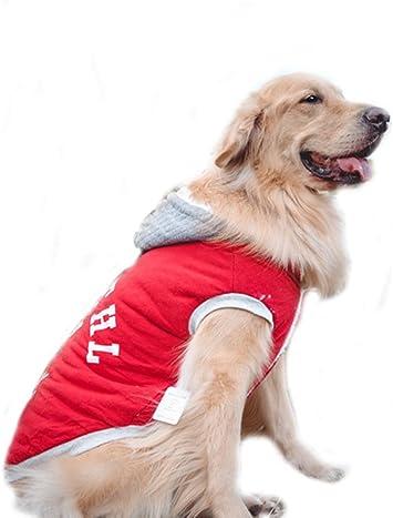 Amazon.com: Tamaño grande de perro, ropa chamarra para perro ...