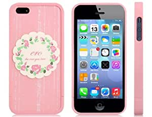 Plastic Bumper with Garland Print Matte Back Cover for iPhone 5S/ 5