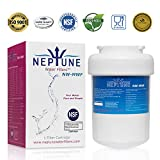 Neptune Water Filters Replacement for Refrigerator Water Filter For GE MWF, MWFP, MWFA, MWFAP, MWFINT, GWF, GWF01, GWF06, GWFA, HWF, HWFA, FMG-1, RWF0600A (1) -  Fazz Ltd