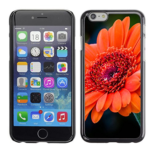 "Premio Sottile Slim Cassa Custodia Case Cover Shell // F00020800 Tangerine fleur // Apple iPhone 6 6S 6G 4.7"""