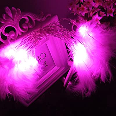 Sunniemart 20 LED Battery Operated String Lights Feather Styled Fairy Lights Indoor Christmas Lights for Wedding Party Bedroom Decoration