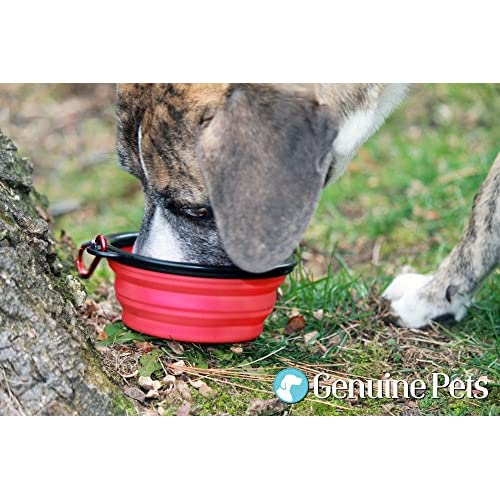 Collapsible Dog Bowls by Genuine Pets (Set of 2!) - Durable, Collapsible & Convenient - Perfect as Travel Dog Bowl for Food & Water - BPA Free & Dishwasher Safe - 100% Money Back Guarantee