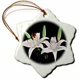 3dRose Florene Flowers - White Water Lillies On Black - 3 inch Snowflake Porcelain Ornament (orn_109426_1)