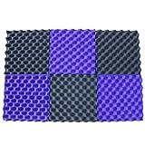 6 Pack Purple/Charcoal egg crate foam acoustic foam