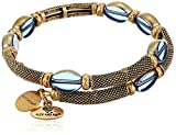Alex and Ani Warrior Dusk Wrap Bracelet