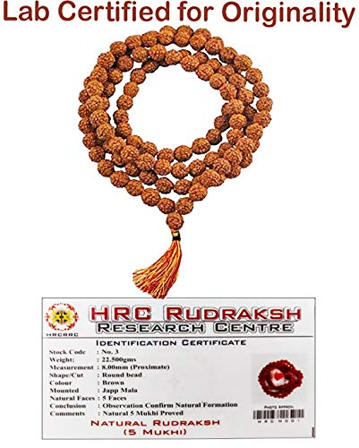 Tulip Meadow Rudraksha Mala Japa 108 Indian Beads 8mm Prayer Necklace Kanth Mala Wrist Mala Wrap Bracelet