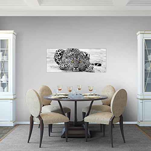 Bilder-Afrika-Leopard-Wandbild-Vlies-Leinwand-Bild-XXL-Format-Wandbilder-Wohnzimmer-Wohnung-Deko-Kunstdrucke-Grau-1-Teilig-MADE-IN-GERMANY-Fertig-zum-Aufhngen-000312a
