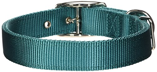 Hamilton Double Thick Nylon Deluxe Dog Collar, 1-Inch by 22-Inch, Teal