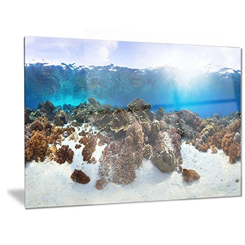 Designart Indonesia Underwater Panorama - Photography Metal Wall Art - MT6443 - 40x30 by Design Art