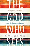 The God Who Sees: Immigrants, the Bible, and the