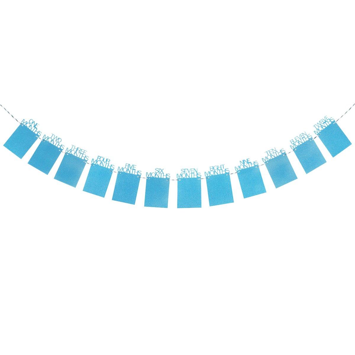 Tinksky赤ちゃん成長記録1 – 12口フォトロープのバナー1st誕生日パーティー装飾用(ブルー)   B075Z7G8QC