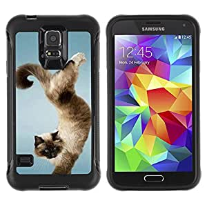 Jordan Colourful Shop@ Funny Beautiful Cat Trick Rugged hybrid Protection Impact Case Cover For S5 Case , G9006 Cover Case ,Leather for S5 ,S5 Cover Leather Case ,G9006 Leather Case