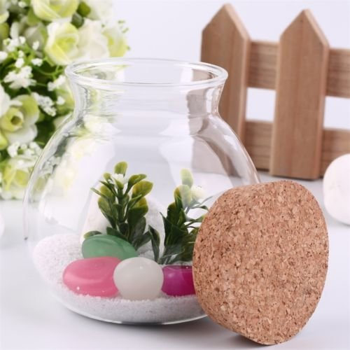 Alicenter(TM) Creative Cute Design Tea Coffee Sugar Glass Canisters Flower Plant Vase A