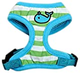 Zack & Zoey Beachcomber Pet Harness, X-Small, Parrot Green