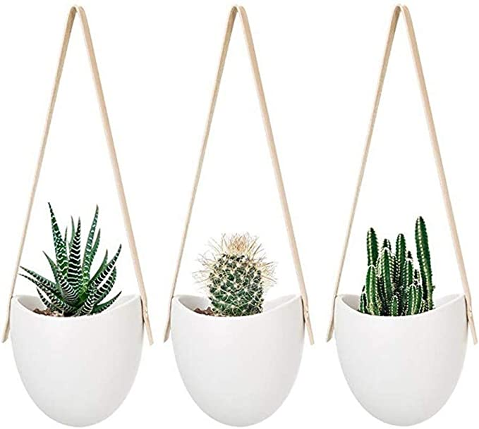 Ceramica de cactushttps://amzn.to/2R0V0gS