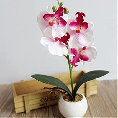 XILALU Artificial flower, Four Butterfly Orchid Meaty Plant Bonsai Creative Flower Arranging Accessories