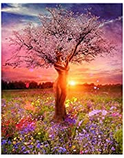 ADanie DIY Oil Painting Paint by Number Kits Sunset Pretty Lady for Adult Beginners Kids 16 * 20 Inch (with Wooden Frame)