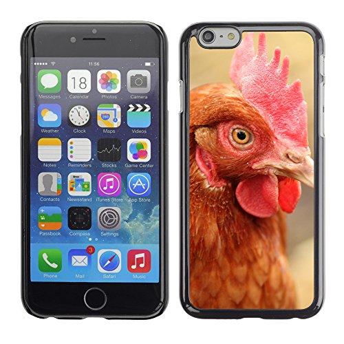 "Premio Sottile Slim Cassa Custodia Case Cover Shell // F00007816 poulet // Apple iPhone 6 6S 6G PLUS 5.5"""