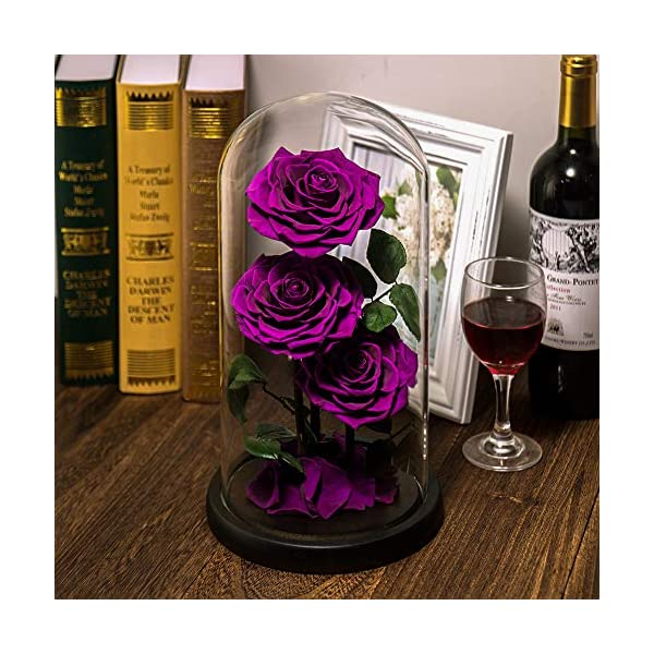 Preserved Real Rose Handmade Eternal Rose in Glass Doom Gifts for Her Valentine's Day Mother's Day Anniversary Birthday (3 Purple Rose)