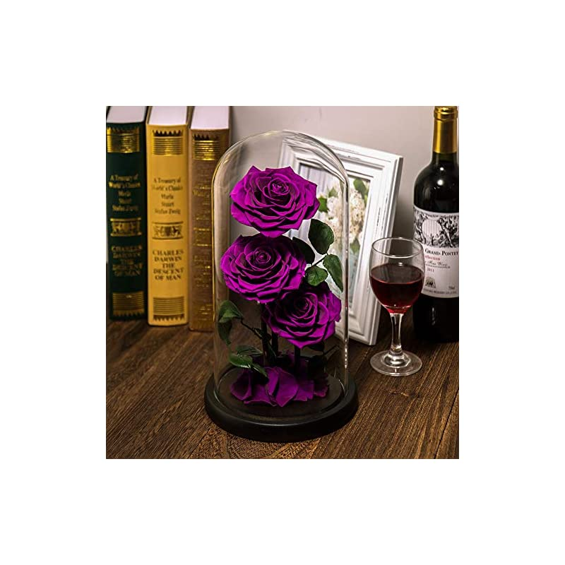 silk flower arrangements eterfield preserved real rose handmade eternal rose in glass doom gift for her valentine's day mother's day anniversary birthday (large, 3 purple roses)