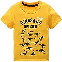 Boys Short Sleeve Cotton T-Shirt T-Rex Dinosaur Shirt Tee