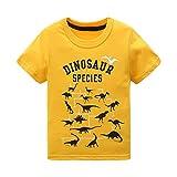 #8: HowJoJo Boys Dinosaur T Shirts Cotton Long Sleeve Shirt Graphic Tees