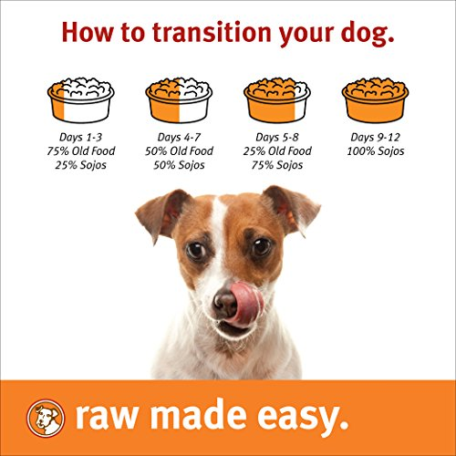 Adding Hot Water To Raw Dog Food