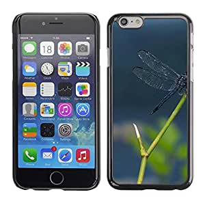 LECELL -- Funda protectora / Cubierta / Piel For Apple iPhone 6 -- Plant Nature Forrest Flower 112 --