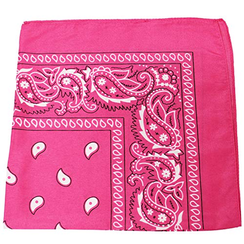 Mechaly Paisley 100% Polyester Bandana (Hot Pink)12 Pack