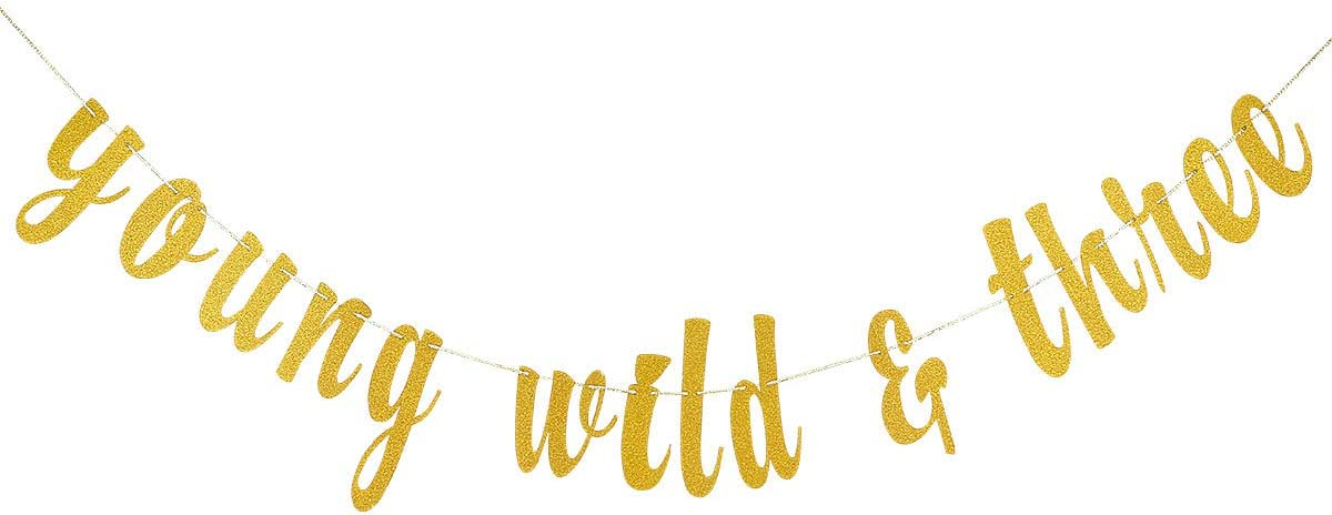 Gold Glittery Young Wild & Three Banner for 3rd Birthday Decor,3rd Birthday Banners,3rd Birthday