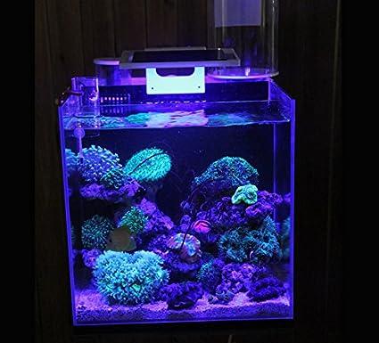 Amazon Com Led Aquarium Fish Tank Clamp Clip Lamp Lighting