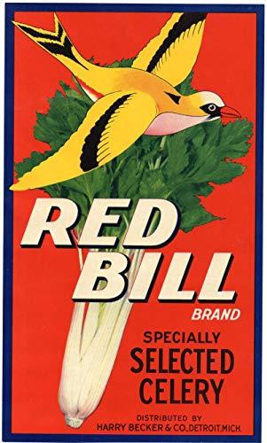 Detroit Michigan Red Bill Celery Vintage Advertising Label Ad J79399