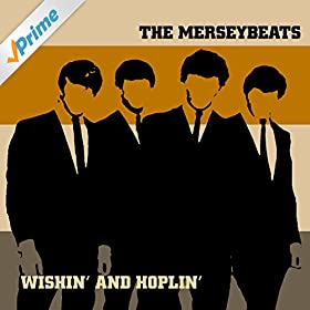 Merseybeats Its Love That Really Counts