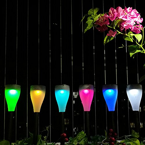 Garden Of Coloured Lights - 9