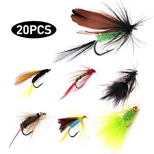 LotFancy Dry Wet Flies Fly Fishing Kit with Waterproof Tackle Box Nymph Flies, Wooly Bugger Flies, Streamers, Emergers, Caddis Fly Assortment for Trout Bass Salmon (20PCS,NO Storage Box)
