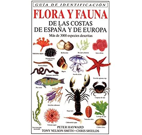 FLORA Y FAUNA COSTAS ESPAÑA Y EUROPA GUIAS DEL NATURALISTA-PECES ...