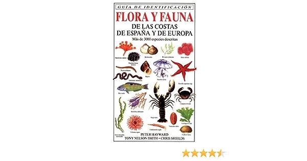 FLORA Y FAUNA COSTAS ESPAÑA Y EUROPA GUIAS DEL NATURALISTA-PECES-MOLUSCOS-BIOLOGIA MARINA: Amazon.es: HAYWARD, ET. AL.: Libros