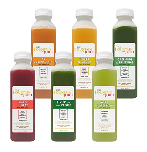 The Fountain of Juice 100% Raw Juice