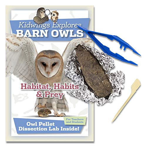 (Barn Owl Pellet Dissection Kit for Kids Includes Tweezers and Bone Chart (Standard 10 Pack))