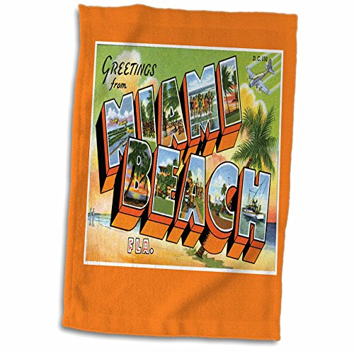 3D Rose Greetings Beach Florida Bold Letters with Scenes from Miami Towel, 15