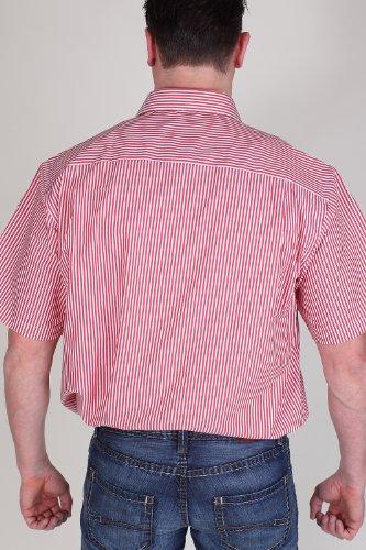 MARVELiS-camicia 7936-12-35 rosso strisce a mezza manica nanahito-Kent