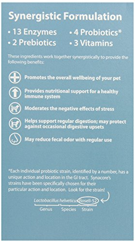 Cheapest VAN BEEK Synacore Digestive assistance for Dogs 30 Pack Check this out