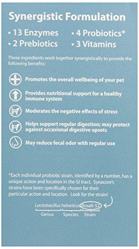 VAN BEEK Synacore Digestive help support Vitamins Supplements