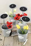 Dexon Power 12 Table Number Garden Planters with Chalkboards 9''