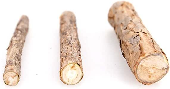 Catnip Silvervine Sticks Cat Treat Matatabi Stick Cat Teeth Cleaning Stick Rod with Pure Natural Catnip Small Animal Molar Toothpaste Stick Pet Cat Dental Treat Chew Toy (Diameter 1-1.5cm, 3pcs)