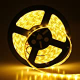 Lemonbest® Warm White led Strip light Waterproof Flexible SMD 5050 300 LEDs LED Strip Lights, 16.4ft 5 Meter